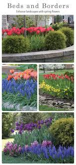 best 25 garden bulbs ideas on planting bulbs bulb
