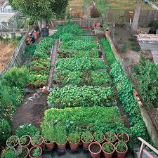 oklahoma vegetable gardening u2013 sdgtracker