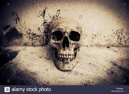 human skull on ruins place horror background for halloween concept