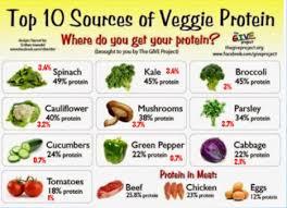 alimentazione ricca di proteine genbioagronutrition l inganno della dieta vegana