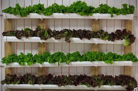 How To Build Vertical Garden - how to build a fence gutter garden video tutorial garden