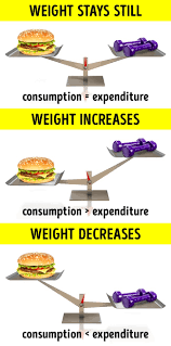 there is only one thing that influences your weight