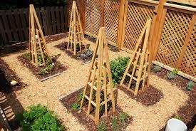 back to organic u2013 organic garden plan