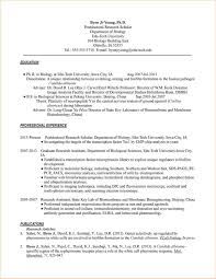 resume format for phd application resume for your job application