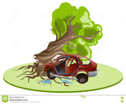accident car crash ran into tree vehicle insurance stock vector