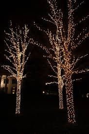 Best Outdoor Christmas Lights by 13 Best Lamps Outdoor Lighting Images On Pinterest Outdoor