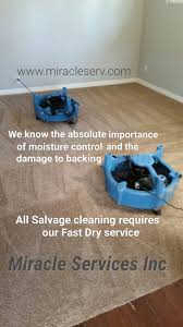 Laminate Flooring And Pet Urine Our Specials