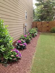 elegant as well as gorgeous bushes to put in front of house