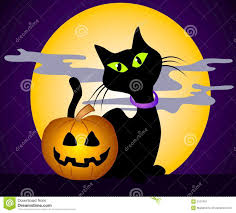 black cat halloween graphics royalty free stock photos image