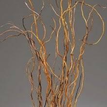 curly willow branches curly willow branches 4 5 10 bunches