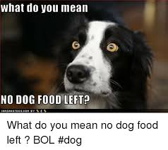 Dog Food Meme - what do you mean no dog food left what do you mean no dog food left