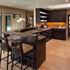 Bar Kitchen Design 199 Best Kitchen Remodel Images On Pinterest Home Kitchen And