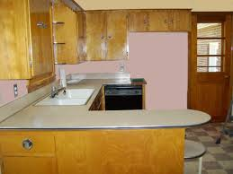 painting ideas kitchen paint colors to showcase a vintage pink