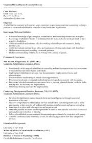 Sample Resume For Drug And Alcohol Counselor by Resume Sample Human Services Counselor Resume Sample Counselor