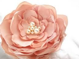 Threshold Aqua Peach Birds Floral 216 Best Perfect Peach Images On Pinterest Colors Fashion