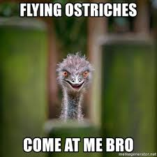 Come At Me Bro Meme Generator - flying ostriches come at me bro rapist ostrich meme generator