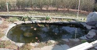 small fish pond idea for home garden 4 home ideas