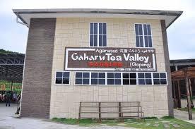 Teh Gaharu gaharu tea valley gopeng showroom picture of gaharu tea valley