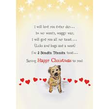 border terrier christmas cards borderworld