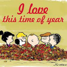 116 best peanuts pooh images on peanuts