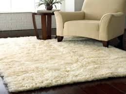 Modern Shag Rugs Soft Area Rugs Target Silver Shaggy Carpet Modern Pile Thick