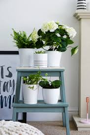 Ikea Bekvam Stool by From Simple Stool To Pretty Plant Stand U2014 The Ordinary Lovely
