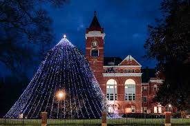 christmas lights in rock hill sc winthrop university southern magnolia trees sc