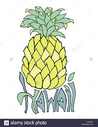 black silhouette pineapple fruit stock photos u0026 black silhouette