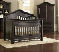 Convertible Cribs Babies R Us Convertible Cribs Acrylic Coastal Birch Canopy Babies R Us