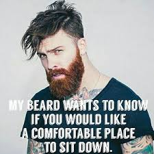 Beard Memes - top 60 best funny beard memes bearded humor and quotes