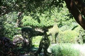 Topiaries Brisbane - oooh scarey the great australian outdoors pinterest