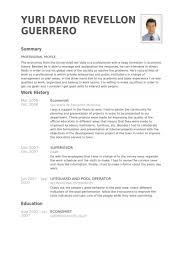 economist resume samples visualcv resume samples database
