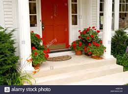 red front door red front door u0026 potted geraniums at home entrance stock photo