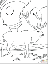 articles mountain bike coloring pages tag bicycle coloring