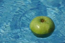 pool service west palm beach pool doctor of the palm beaches