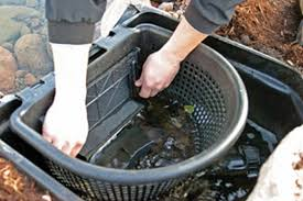 aquascapes of ct aquascapes of ct llc signature series skimmer 6 0 8 0 rigid