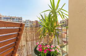 long term rentals europe ok apartment barcelona short and long term rentals barcelona