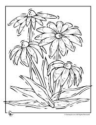 65 coloring pages images coloring books