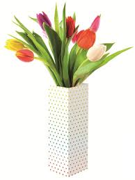 A Flower Vase Flower In Vase The Most Beautiful Interior Vase Design Red Flower