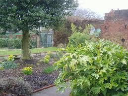 open day at ashton park walled garden blog preston