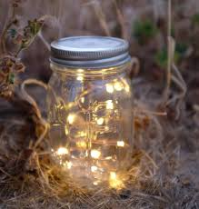Rose Lights String by Firefly Lights And Mason Jar Outdoor Lightning Rustic Fairy