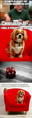 Dungeons And Dragons Memes - these dungeons dragons memes are sure to be a critical hit with