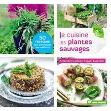 la cuisine des plantes sauvages je cuisine les plantes sauvages de amandine geers et olivier degorce