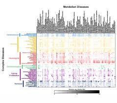 Uchicago Map A Computational Genetic Map For Complex Diseases Computation