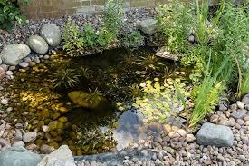 Wildlife Garden Ideas Cheap Garden Wildlife Pond 33 In Wow Home Decor Arrangement Ideas