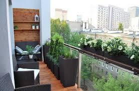 balkon sichtschutz aus glas balkon sichtschutz glas geländer rattan pflanzkübel koniferen