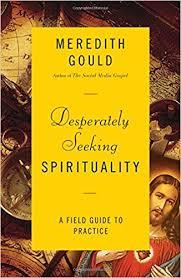 Seeking Novel Desperately Seeking Spirituality A Field Guide To Practice