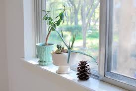 Bathroom Window Ideas by Bathroom Window Sill Ideas