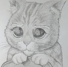 imagenes a lapiz de gatos aprende a dibujar al gato con botas de shrek uncomo
