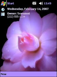 download themes on mobile phone violet flower pocket pc theme skin freeware for windows mobile phone